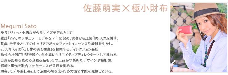 佐藤萌実×極小財布